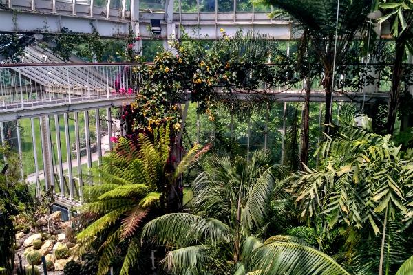Greenhouse at the Jardin Botanique in Geneva, Switzerland.