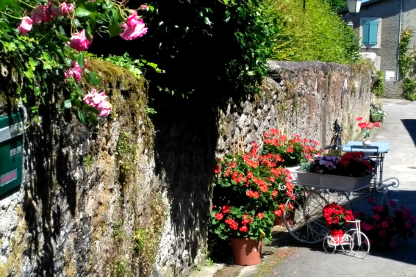 The flowers in the medieval village of Yvoire, France.